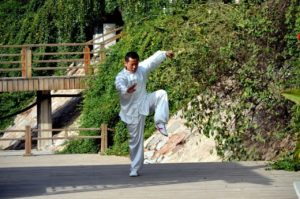 Read more about the article Was macht mein Verein? – Teil 3: Shuai Jiao Kung Fu