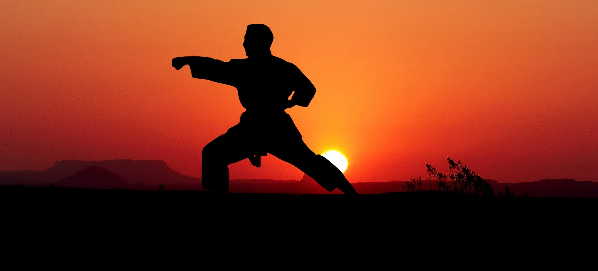 Read more about the article Was macht mein Verein? – Teil 1: Karate
